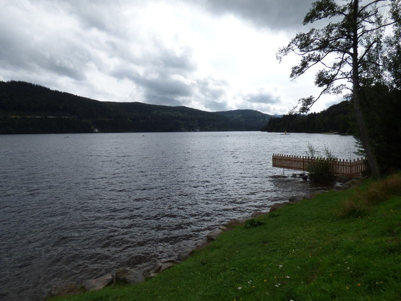 20140811_Titisee_004