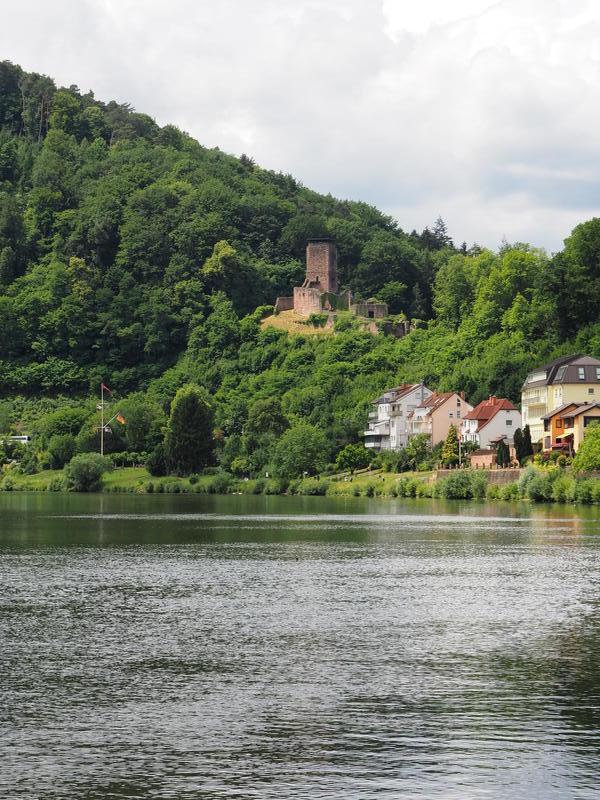 20150613_Neckarsteinach_004