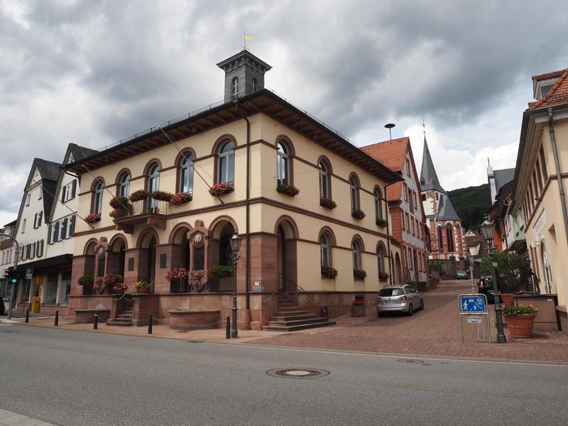 20150613_Neckarsteinach_015
