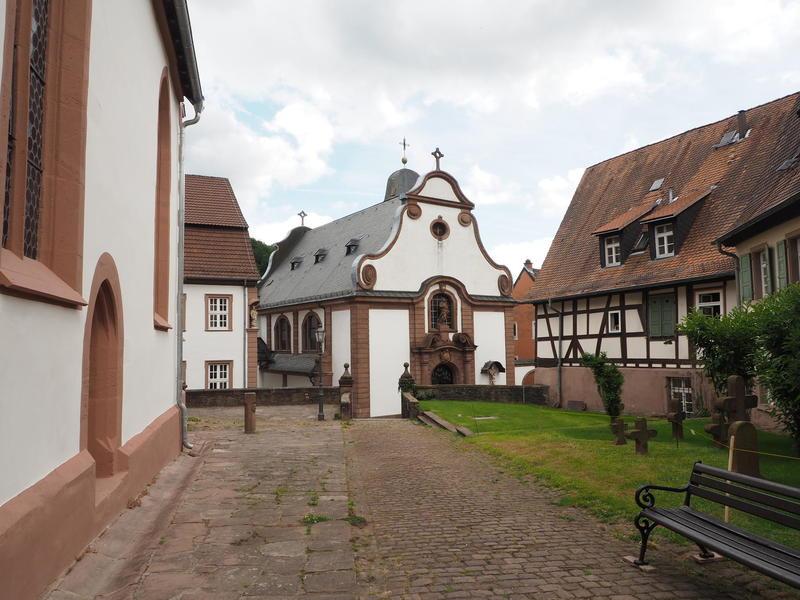 20150613_Neckarsteinach_024