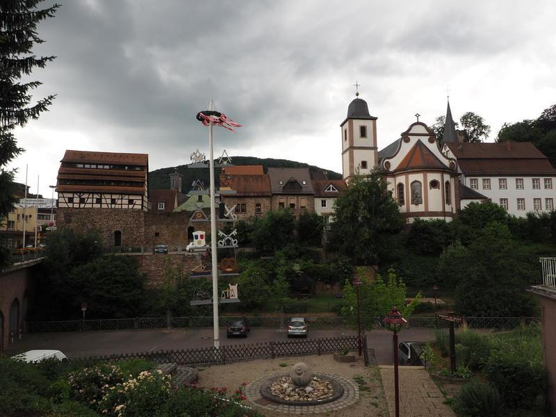 20150613_Neckarsteinach_026