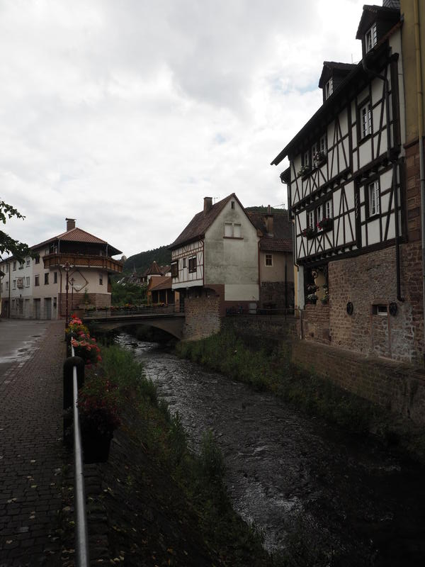 20150613_Neckarsteinach_027