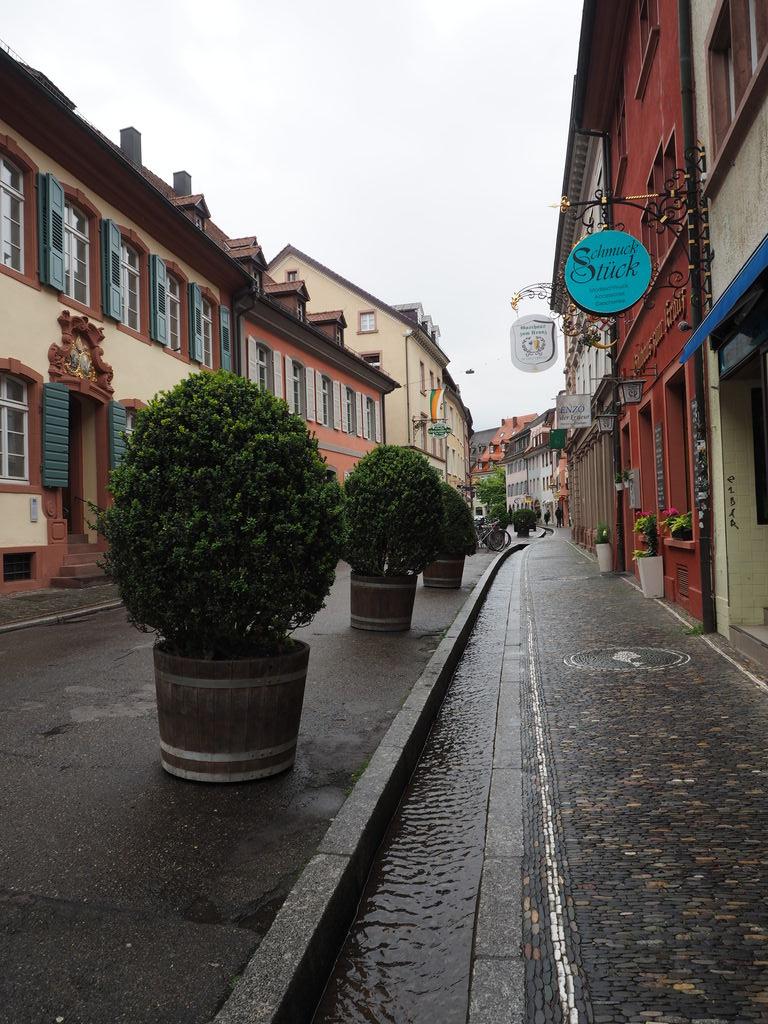 20160516_Freiburg_im_Breisgau_021