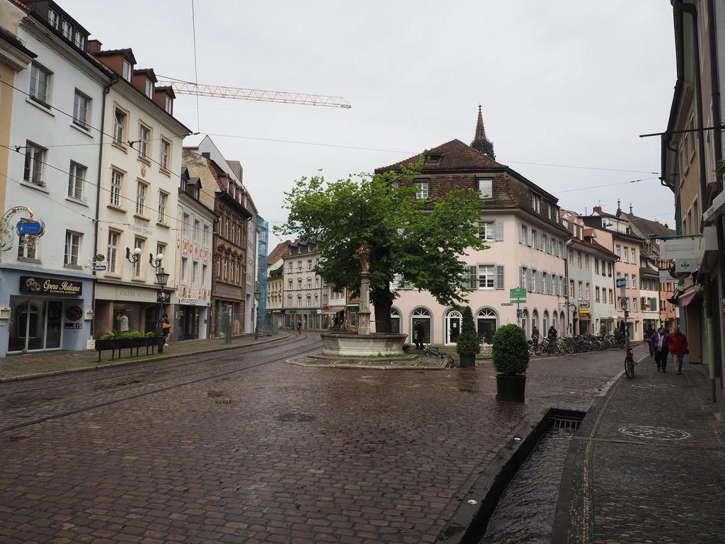 20160516_Freiburg_im_Breisgau_029