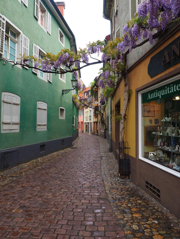 20160516_Freiburg_im_Breisgau_031