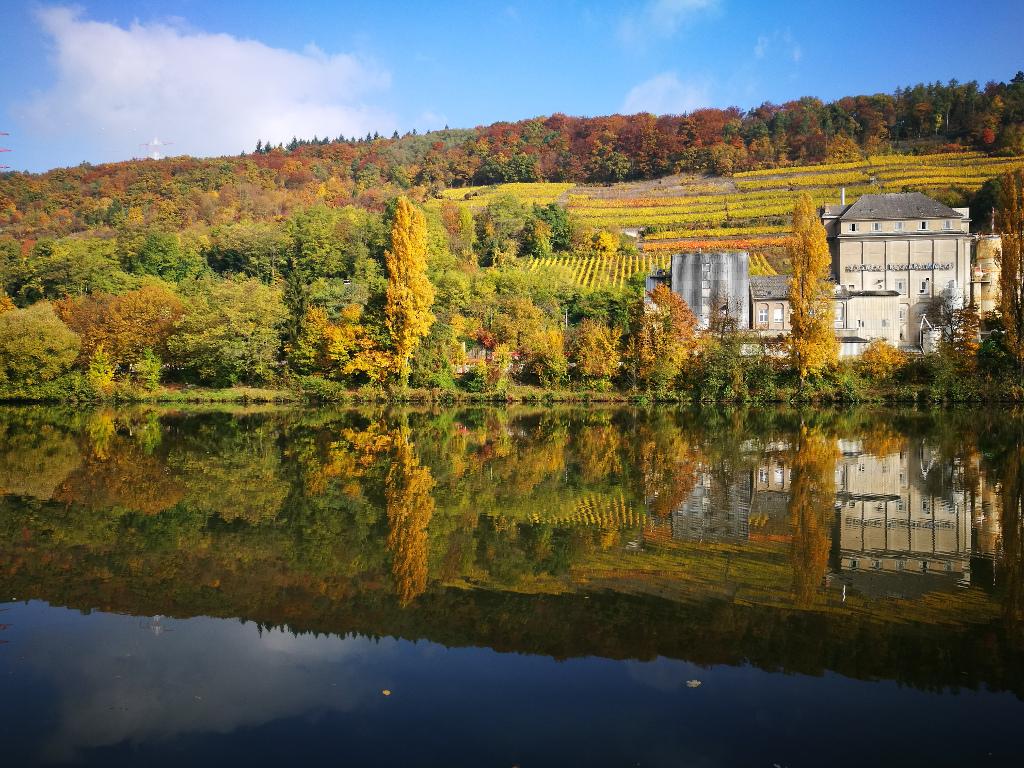 20161029_Herbst_Neckar_002