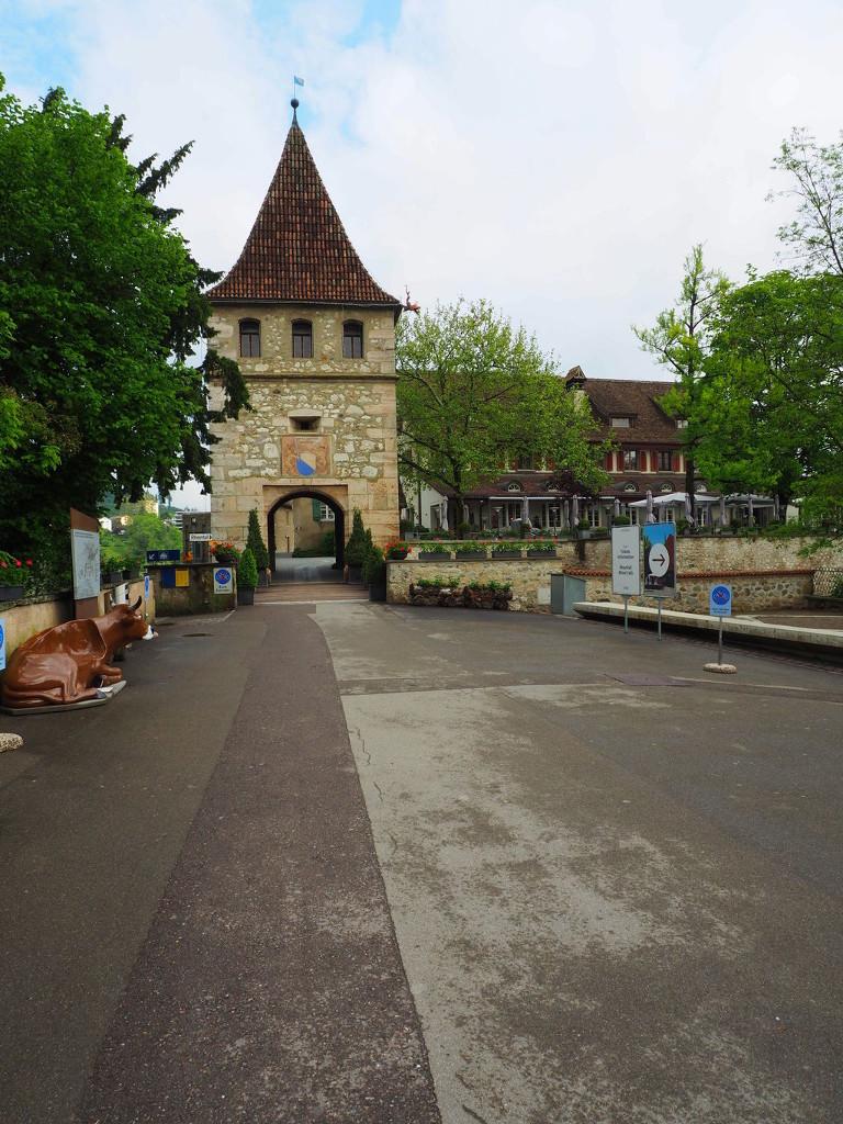 20160514_Rheinfall_001