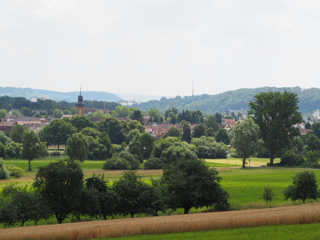 20160717_Spaziergang_in_der_Naehe_005