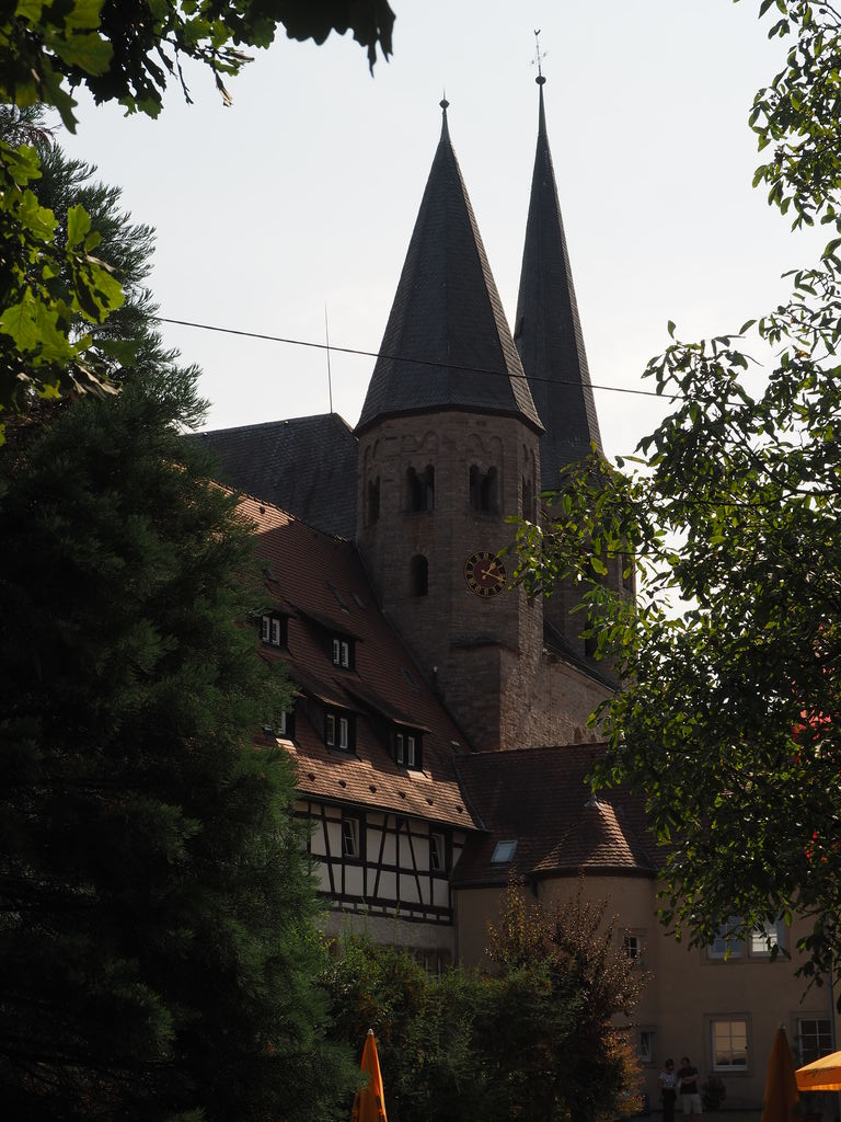 20160911_Ritterstiftskirche_Bad_Wimpfen_003