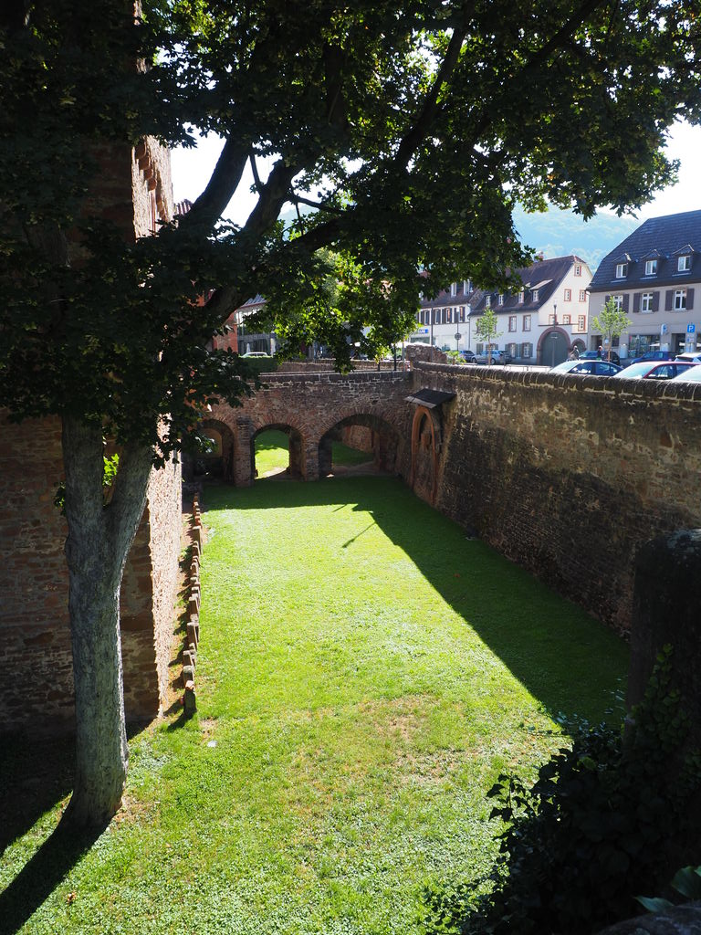20160814_Wanderung_Heidelberg_004