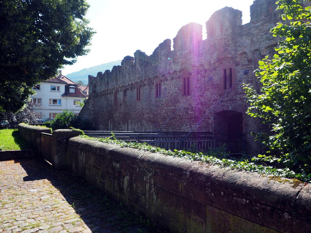 20160814_Wanderung_Heidelberg_005