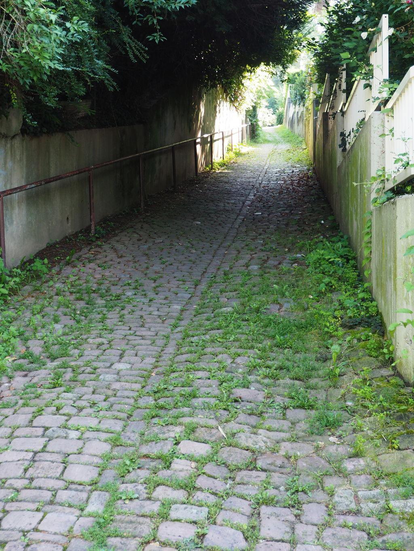 20160814_Wanderung_Heidelberg_007