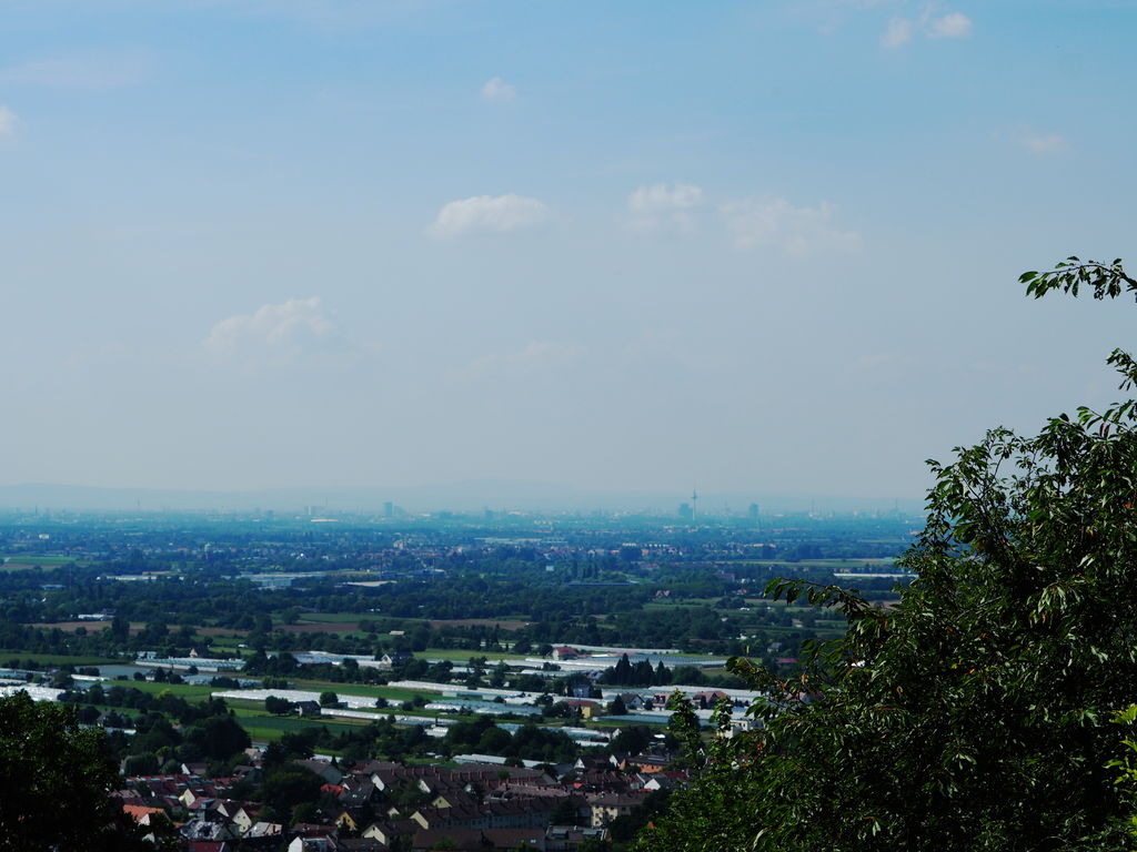 20160814_Wanderung_Heidelberg_034