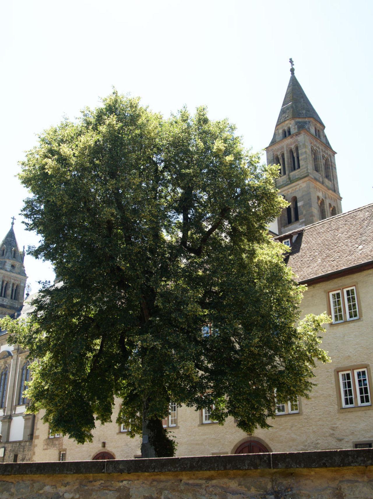 20190628_Kloster_Comburg_019
