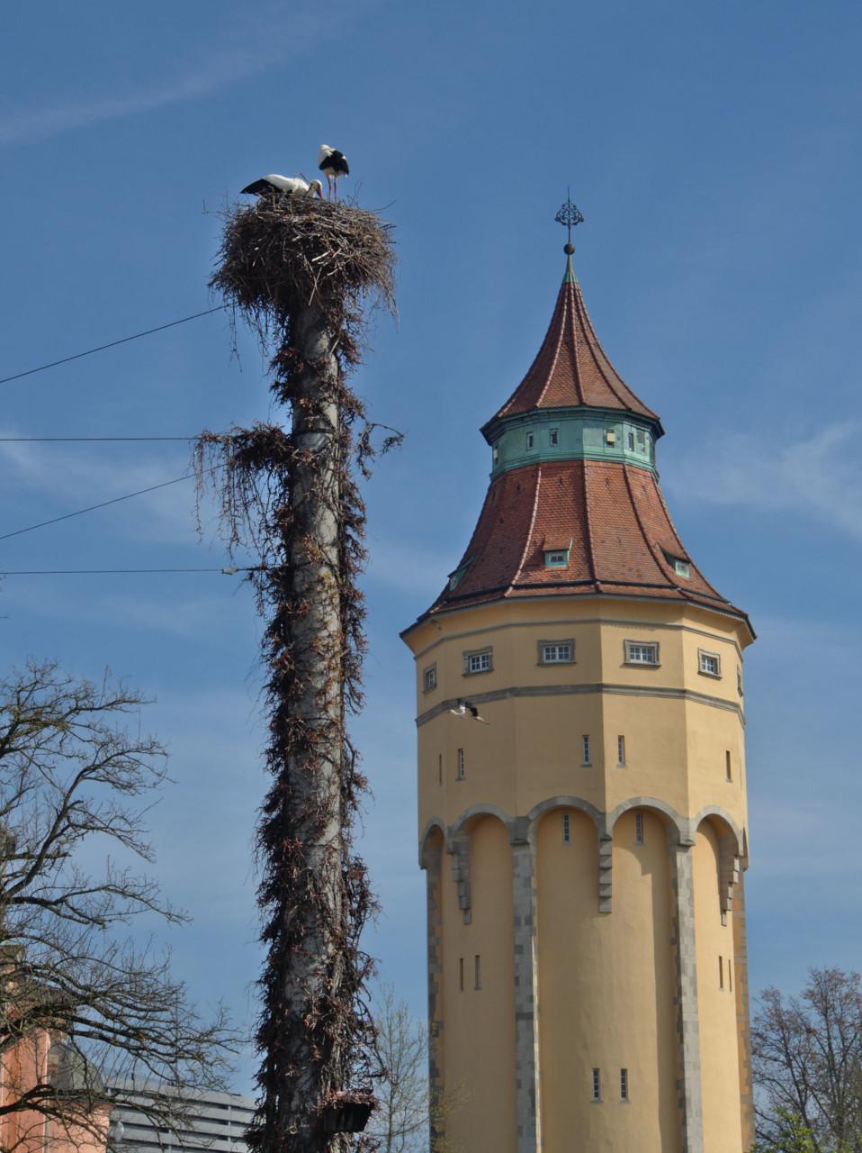 20190406_Rastatt_015
